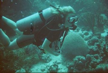 josien diving