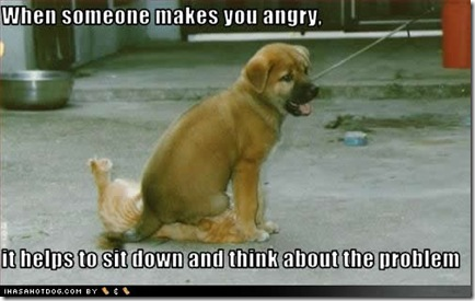 cute-puppy-pictures-angry-sit